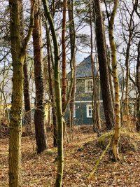 Hausansicht durch den noch wenig ergrünten Wald